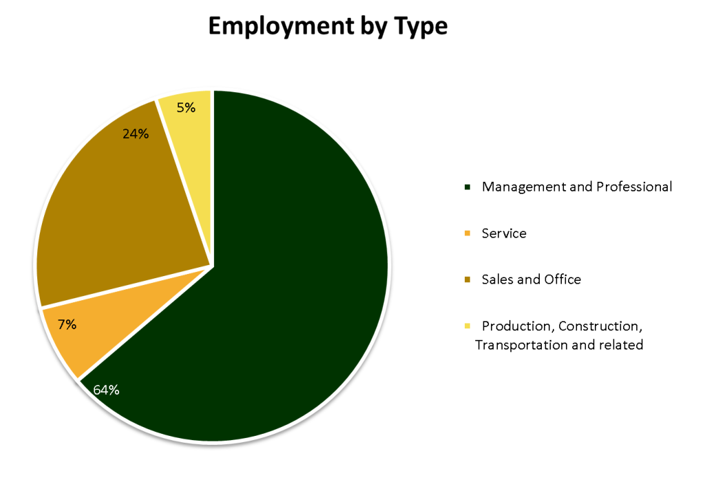 Chart_Employment_by_Type